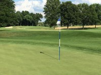 OrchardLakeCC6-Green