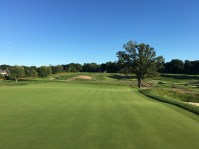 meadowbrook10-green