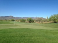 DesertForest10-Greenback