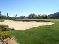 DesertForest10-Greenleft
