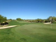 DesertForest16-Greenback