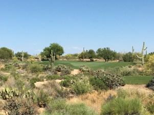 DesertForest5-TeeZoom