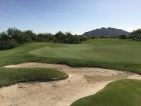 DesertForest6-Greenback
