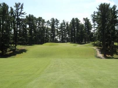 #13 Before - Scale of the hole obscured by surrounding trees.