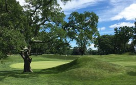 #10 - Large mound left of the green