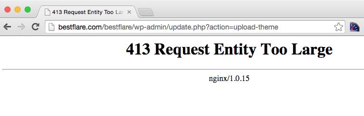 nginx 413 request entity