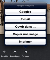 The share menu on iOs.