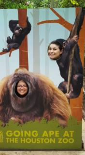 Going ape at the Zoo~