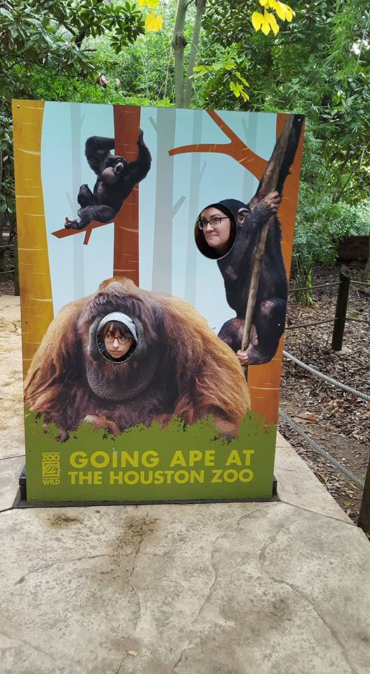 Ape at the zoo!