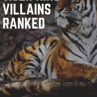 Tiger King's Biggest Villains Ranked