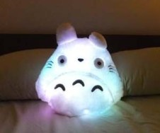 http://www.thisiswhyimbroke.com/light-up-totoro-plushie