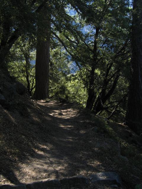 Chilnualna Fall Trail1