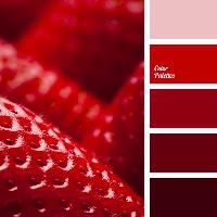 Colour Palette - Strawberries