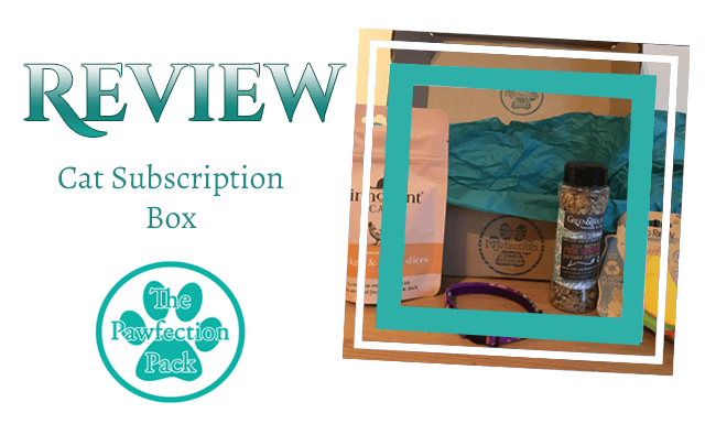The Pawfection Pack: Cat Subscription Box Review