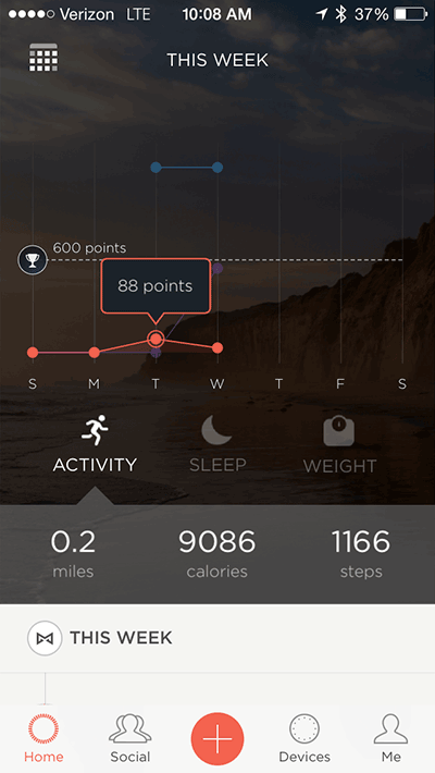 Misfit Fitness Tracking Graph