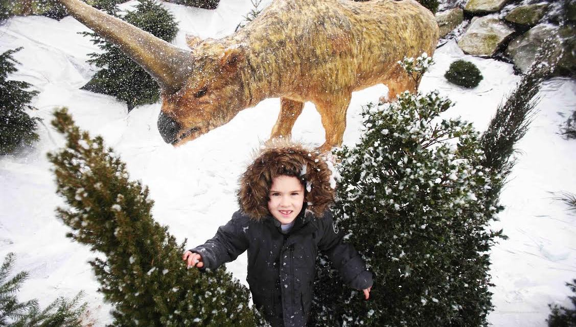 The Ice Age is Coming to Tayto Park!