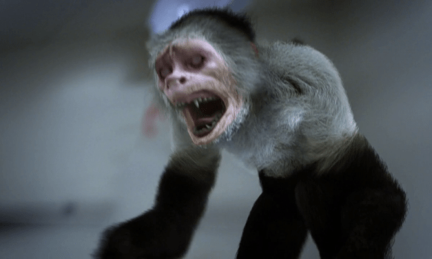 Review: Zoombies