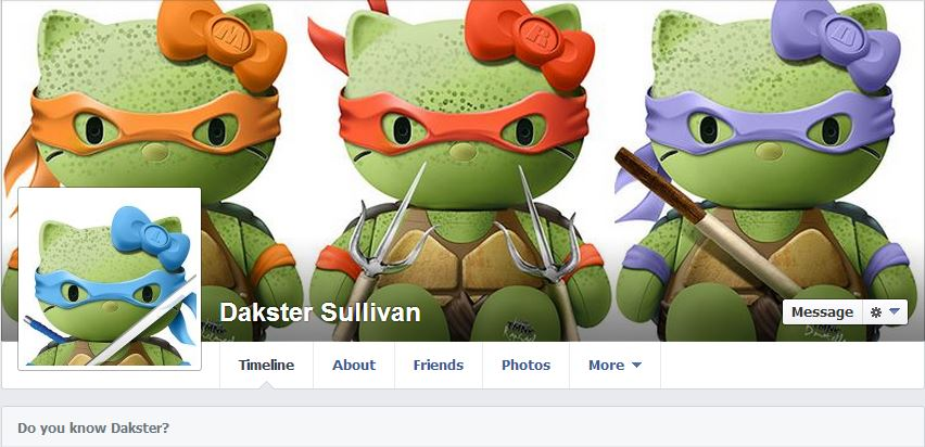I love TMNT. Can you tell?  Image: Dakster Sullivan