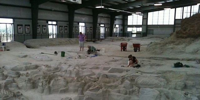 """Inside the Hubbard Rhino Barn, where Nebraska state paleontologists and state university paleontology students are ever-so-slowly uncovering remains of animals who were doused with ash during a volcanic """"storm"""" over 12 million years ago. Photo: Patricia Vollmer."""