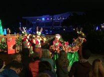 Reindeer musical performance. Image: Dakster Sullivan