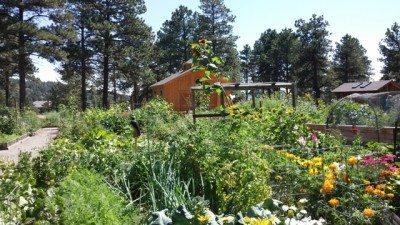 Horticulture? Photo: Judy Berna