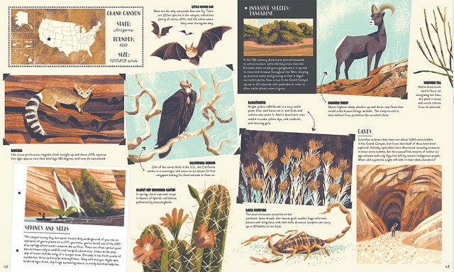 A Double-Page Spread Showcasing the Wildlife and Geology of The Grand Canyon, Image: Wide Eyed Editions