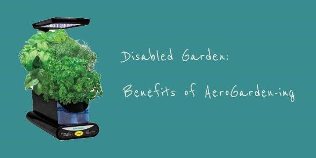 Benefits of Aerogarden-ing Image Jules Sherred