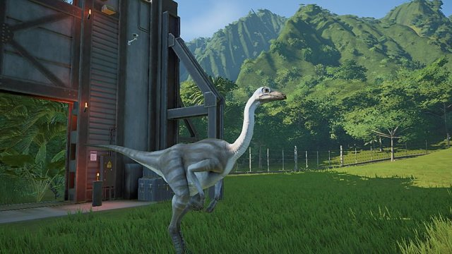 Releasing a Newly-Hatched Struthiomimus, Image: Sophie Brown