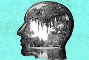 Silhouette of head with a photo of a lake and trees inside it