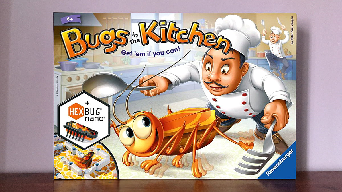 Bugs in the Kitchen, Image Sophie Brown
