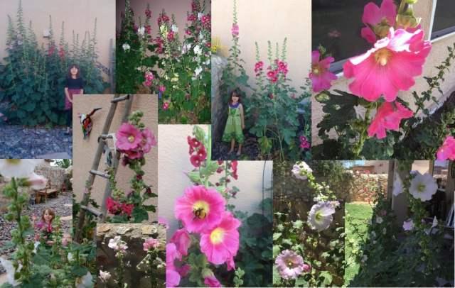floweryears
