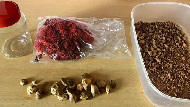 Supplies to Make Mars Jars, Image Sophie Brown
