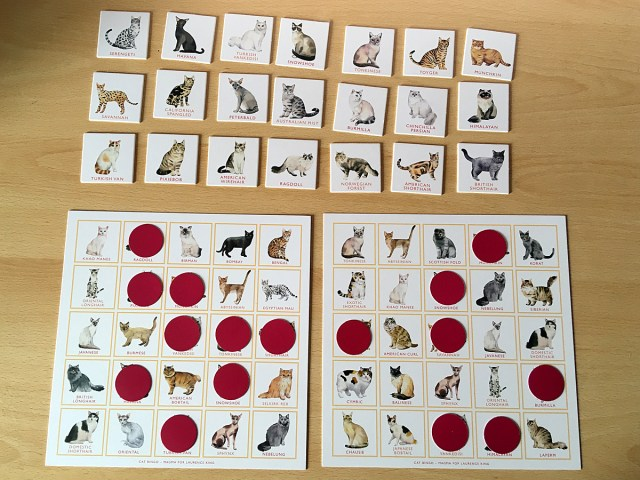 A Game of Cat Bingo in Progress, Image Sophie Brown