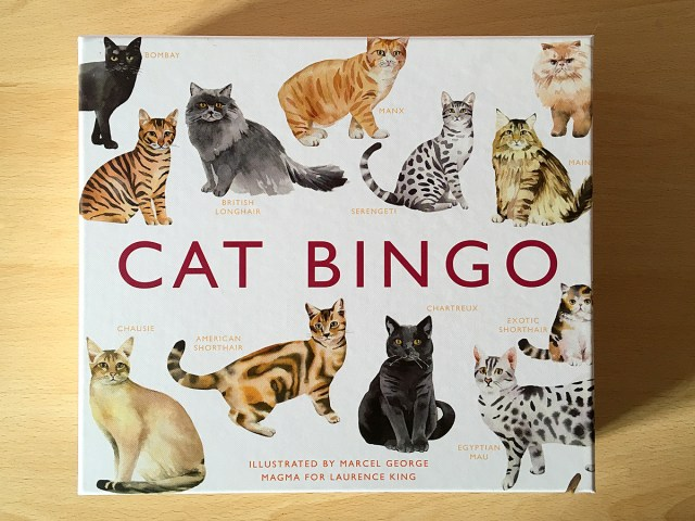 Cat Bingo, Image Sophie Brown