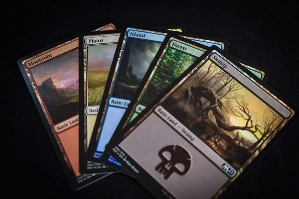 MtG Basic Land Cards
