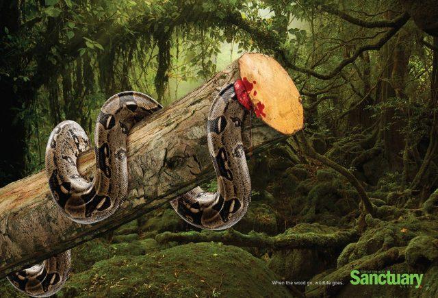sanctuary-anuncio-protecao-devastacao-meio-ambiente-cobra-blog-geek-publicitario