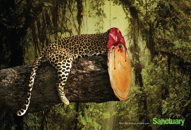 sanctuary-anuncio-protecao-devastacao-meio-ambiente-onca-pintada-blog-geek-publicitario