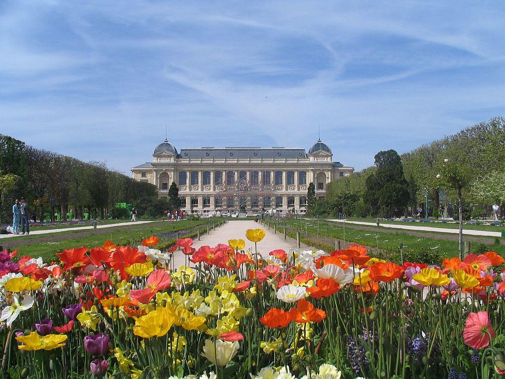 Un Petit Jardin Dutronc | Budapest Ville Du Futur Le Blog De Léo