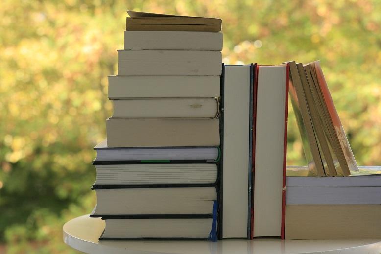 Ein Stapel mit Büchern vor einem Naturhintergrund. Foto: Lilli/geek's Antiques