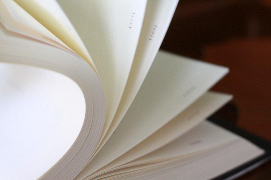 Ein aufgeschlagenes Buch. Foto: geek's Antiques/Lilli
