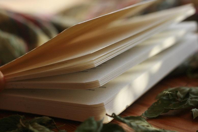 Ein aufgeschlagenes Buch zwischen vertrockneten Blättern. Foto: geek's Antiques/Lilli