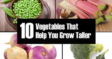 Vegetables to Grow Taller