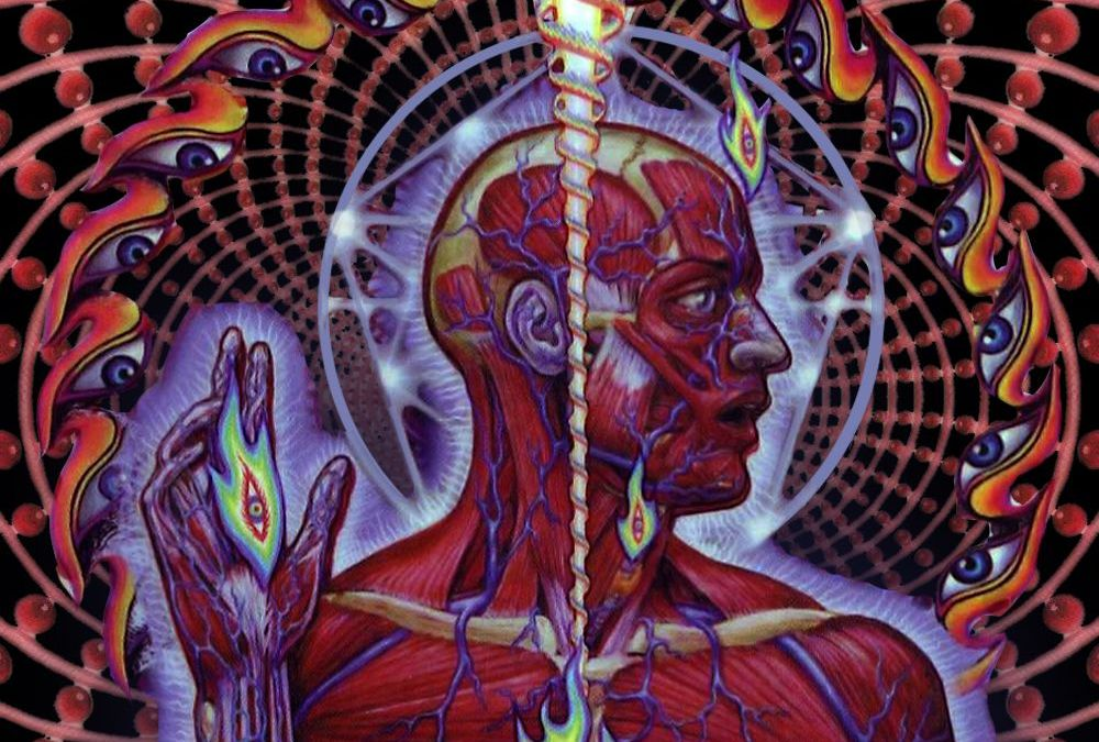 Revisiting Tool's Lateralus and its Fibonacci infused beat and lyrics