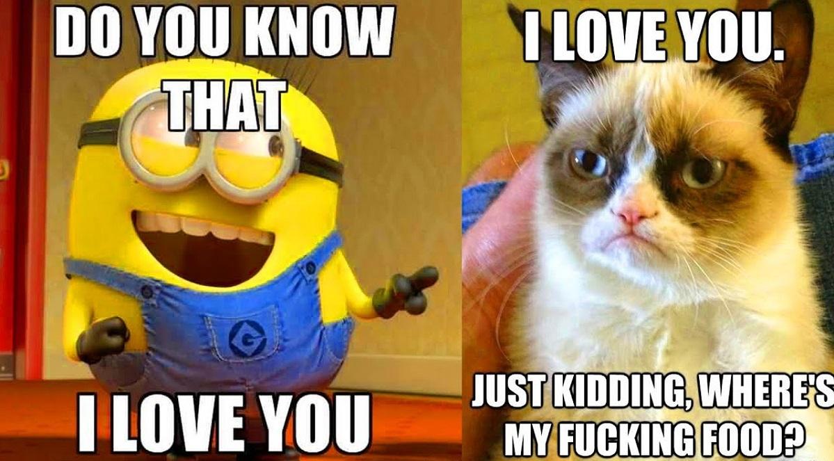 100 funny love memes