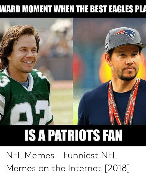 Eagles Memes 2019 : eagles, memes, Eagles, Memes, About, Philadelphia, Football, GEEKS, COFFEE