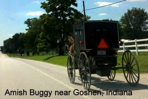 Classic Amish horse and buggy
