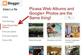 Picasa for all your Digital Picture Needs