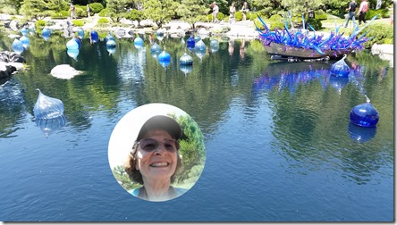 Denver Botanic Gardens with Chihuly Glass exhibit