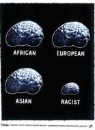 anti-racist-brain