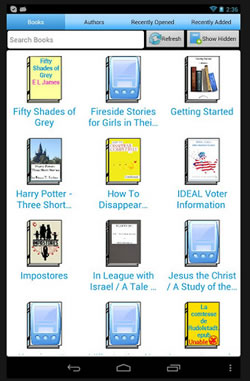 ideal-reader-2